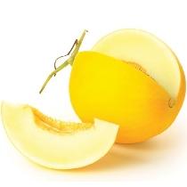 Canary Universallys