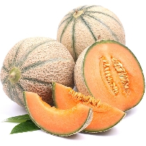 Cantaloupe Universallys