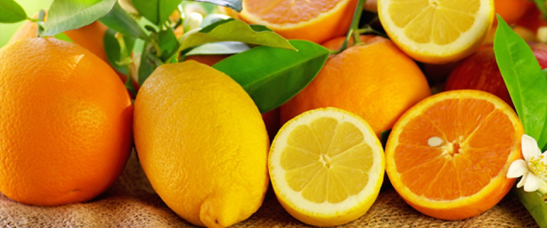 Agroalimentaires-fruits-legumes-tunisie : Universallys